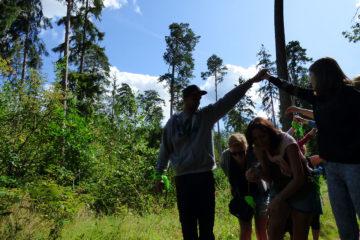 Leczenie lasem