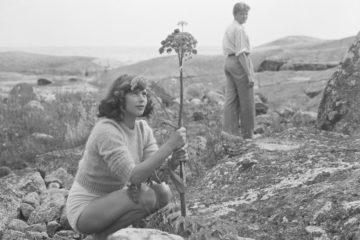 Wakacje z Moniką – retrospektywa Ingmara Bergmana