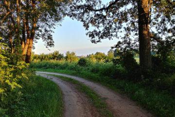 Rajd zielonym szlakiem